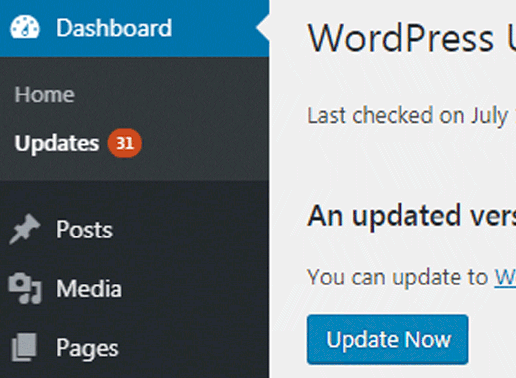 Image of updates to make in a WordPress site